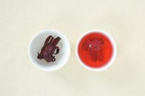 hibiscus-gaku